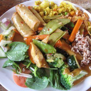 Araya's Vegetarian Place-a restaurant review