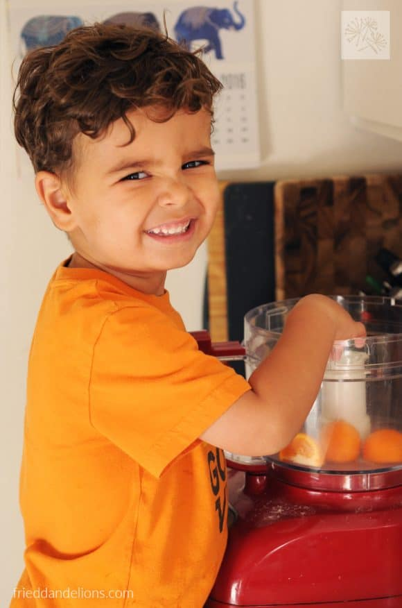 How to Become a Vegan - young boy using food processor