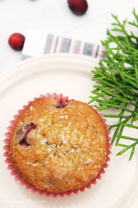 close up of vegan cranberry orange muffins with evergreen branch, and loose cranberries on white background