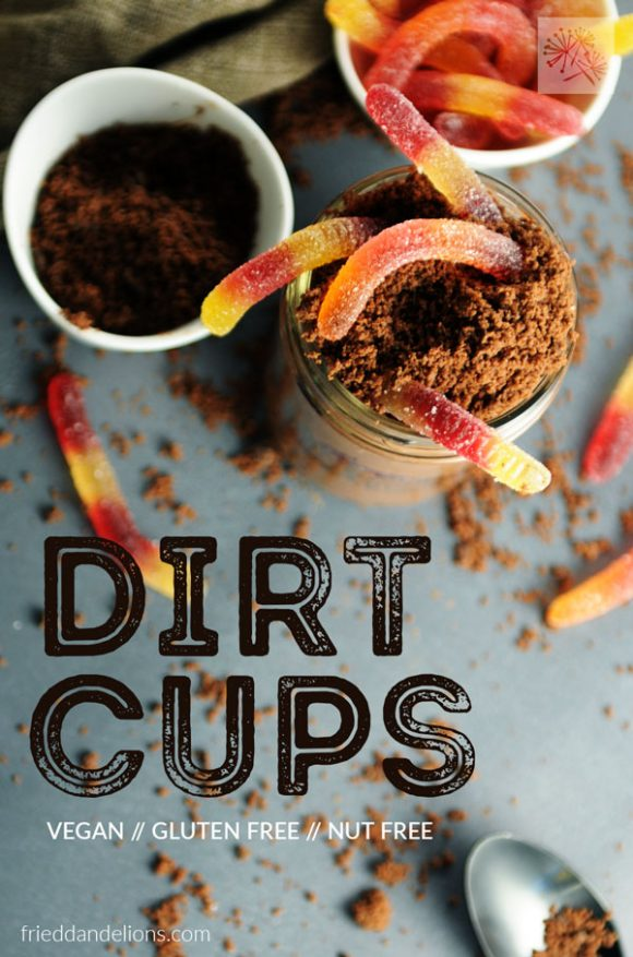 overhead view of vegan dirt cups with text overlay