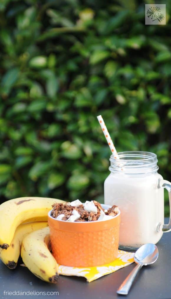 bow of chocolate crunch granola with bananas