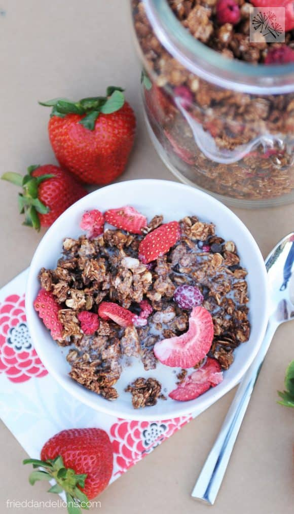 chocolate crunch granola - vegan recipes that are PINK