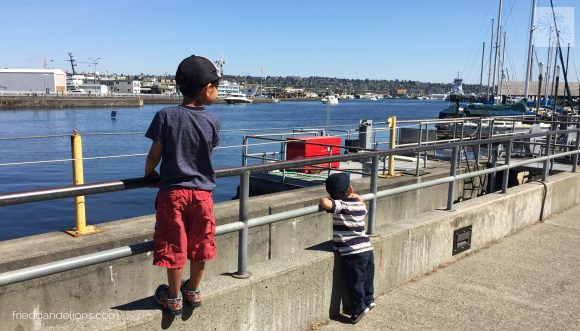 2 boys looking out at Ballard Locks