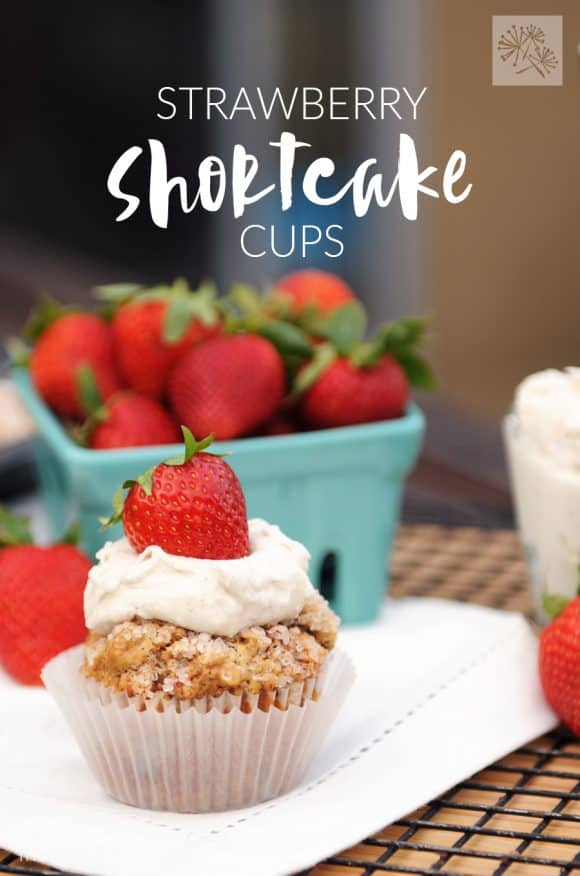 All of the flavors of strawberry shortcake in one convenient package—a Strawberry Shortcake Cup! (vegan, soy free)