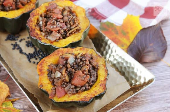 fried dandelions // stuffed squash with curried lentils