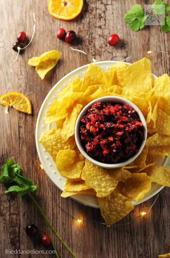 cranberry salsa made in food processor, kitchen gadgets