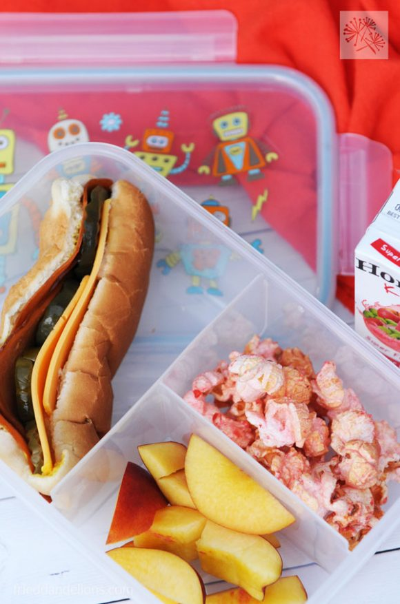 overhead shot of Back to School Lunches hoagie