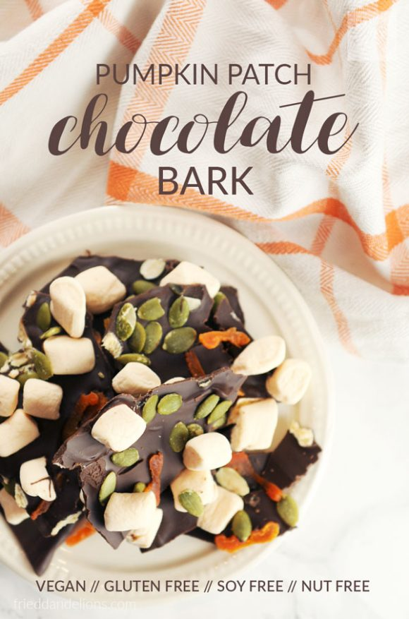overhead view of Pumpkin Patch Chocolate Bark with text