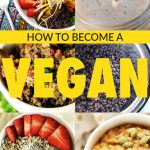 How to Become a Vegan….
