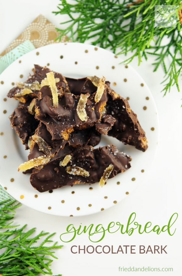 overhead view of Gingerbread Chocolate Bark with text