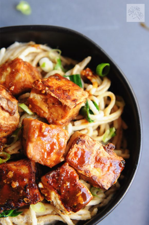 close up of bowl of Fried Tofu with Hoisin and Peanut Sauce Noodles