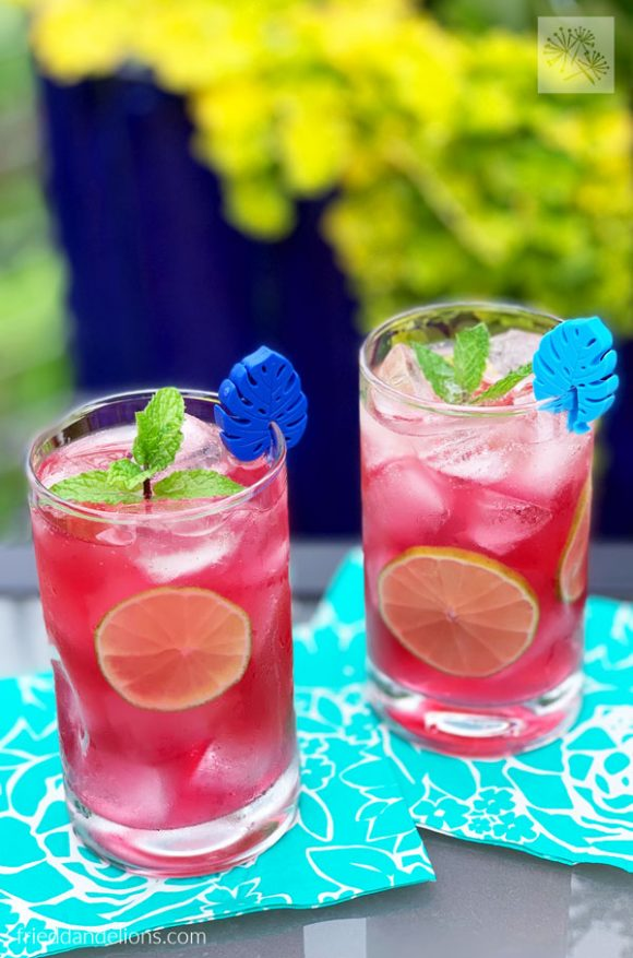 two glasses of Blueberry Mojito Punch on turquoise cocktail napkins with green and blue outdoor background