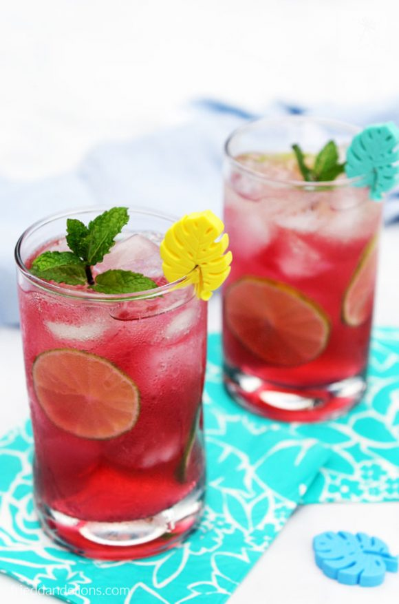 sparkling blueberry mojito punch - vegan recipes that are PINK