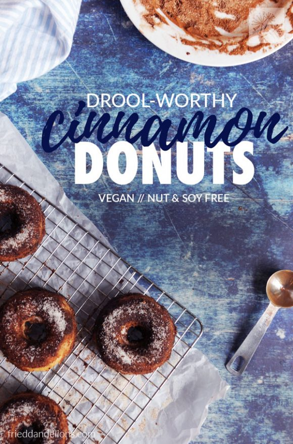 overhead shot of vegan cinnamon donuts with text overlay on a blue background