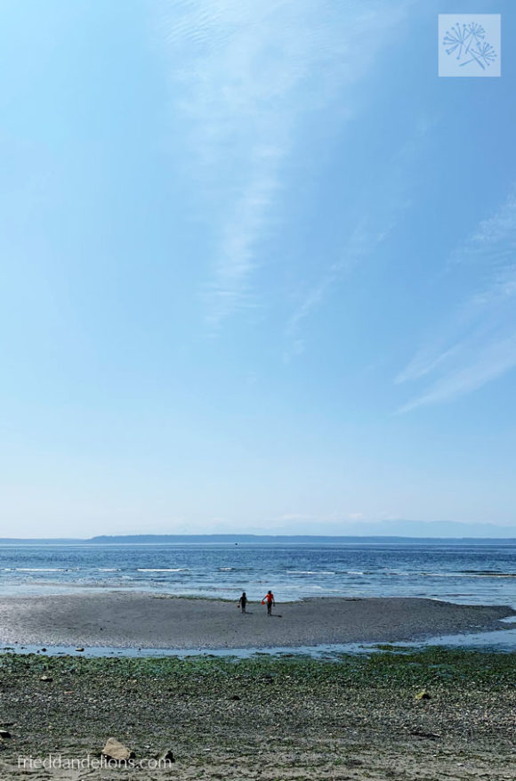 two boys at Meadowdale Beach Park in Seattle on the Puget Sound